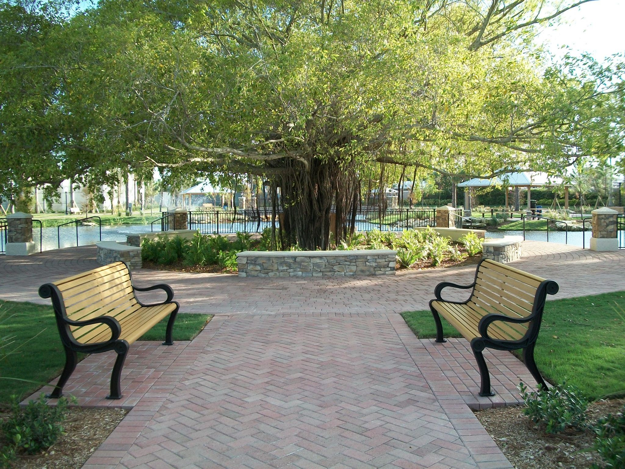 Park with greenery and two benches facing each other